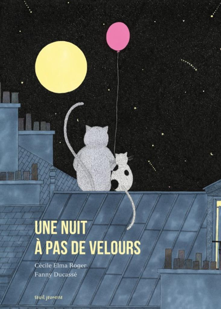 Une nuit à pas de velours / Cécile Elma Roger  